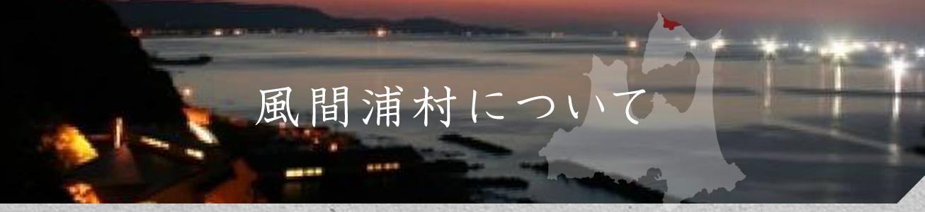 風間浦村について