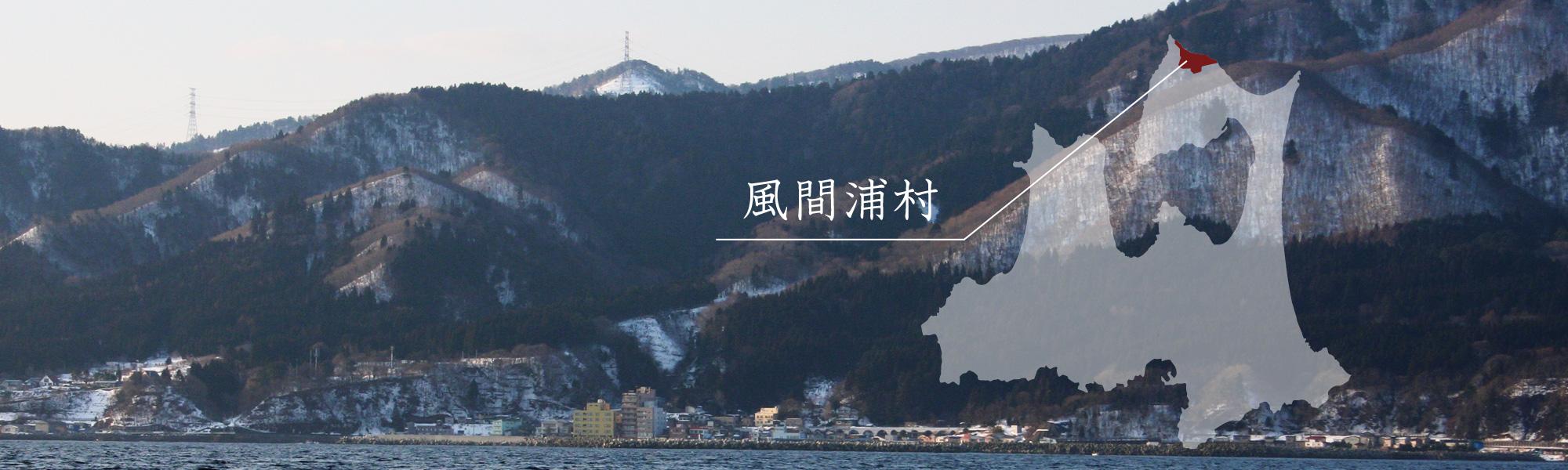 青森県風間浦村について